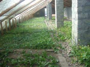 Munsel-ling Greenhouse